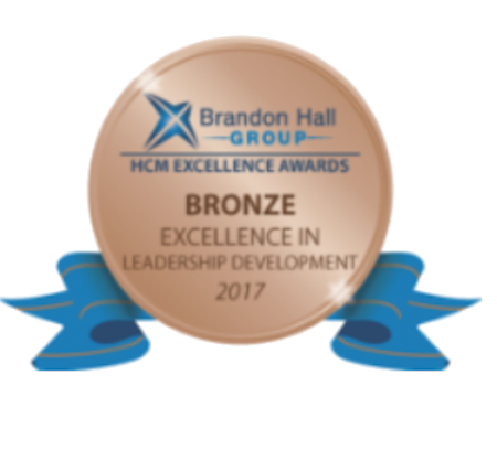 2017 bronze leadership development
